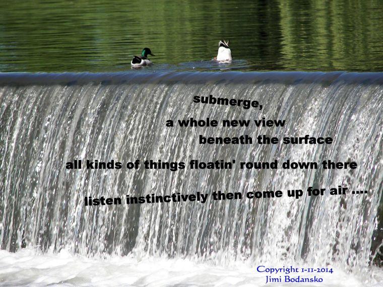 submerge ....