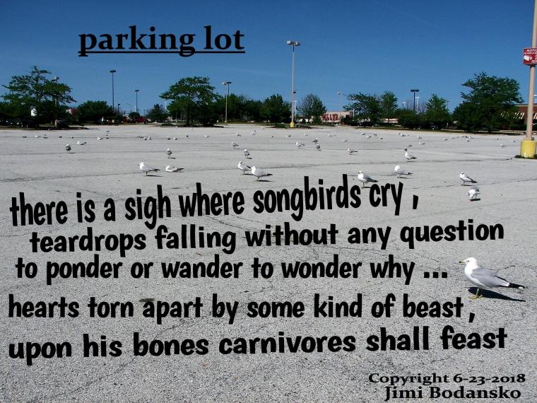 parking lot xxx